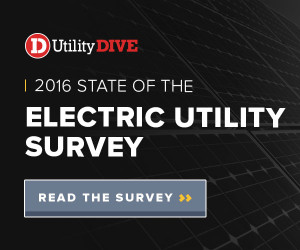 Click image to download survey.